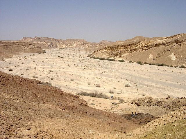 Wadi Nachal Paran (Israel)